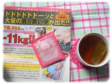 五葉茶とパンフ